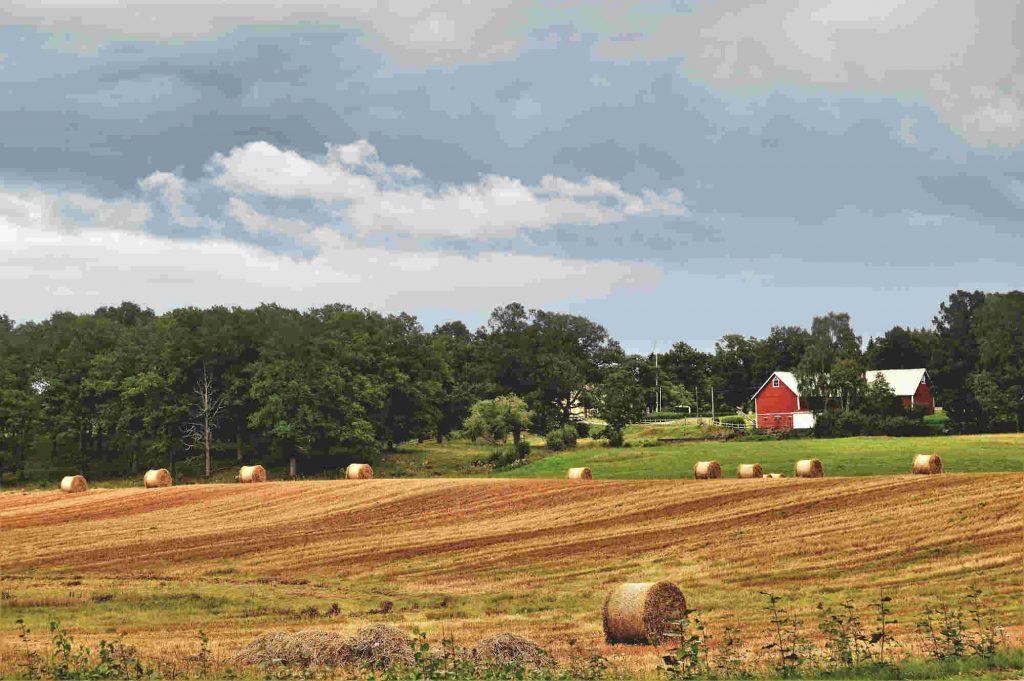 hur många bondgårdar finns det i sverige
